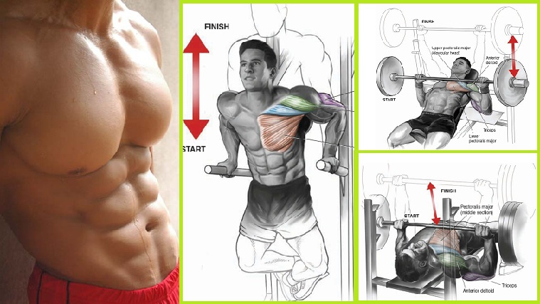 Exercises For a Massive Chest