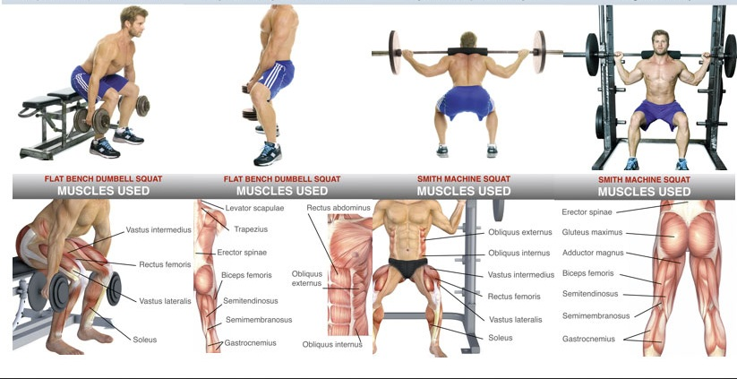 Exercises To Build Leg Muscles Effectively