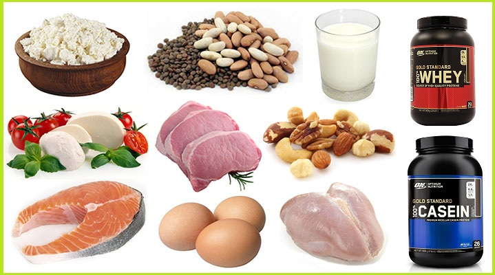 Four Protein Types That You Should Have