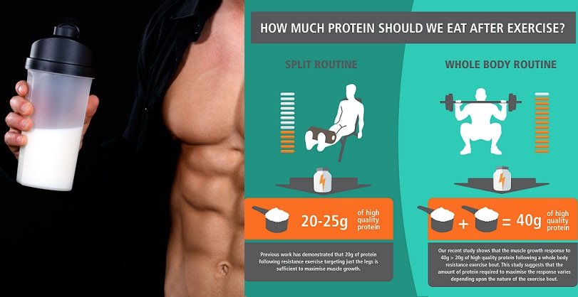 How Much Protein Should You Be Taking