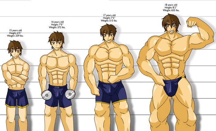 Muscle Building Training Secrets You Should Know