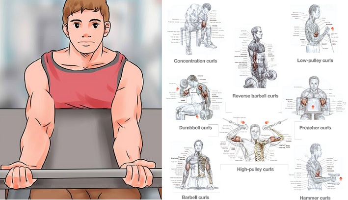 Get Big Arms - 3 Exercises