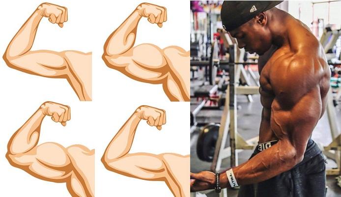 4 Tips For Killer Arms