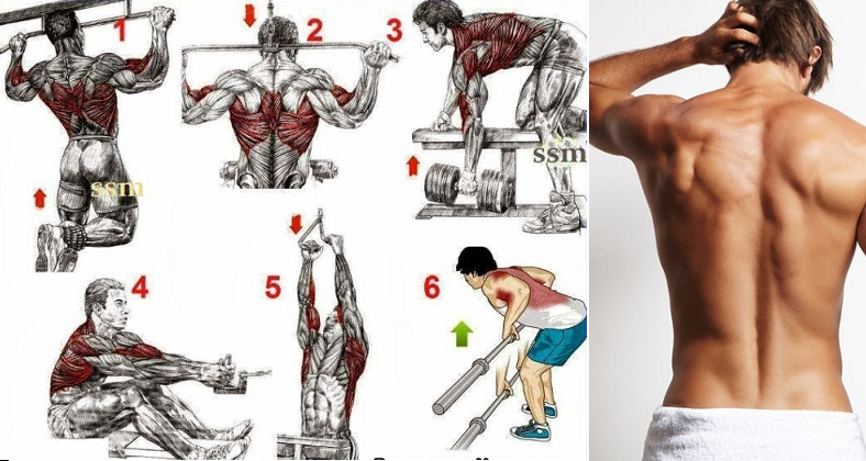 Best Back Exercises To Get It