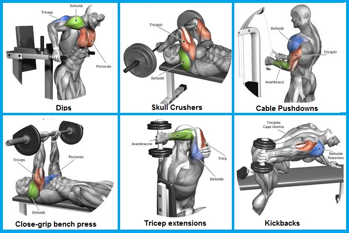Best Exercise For Tricep Mass