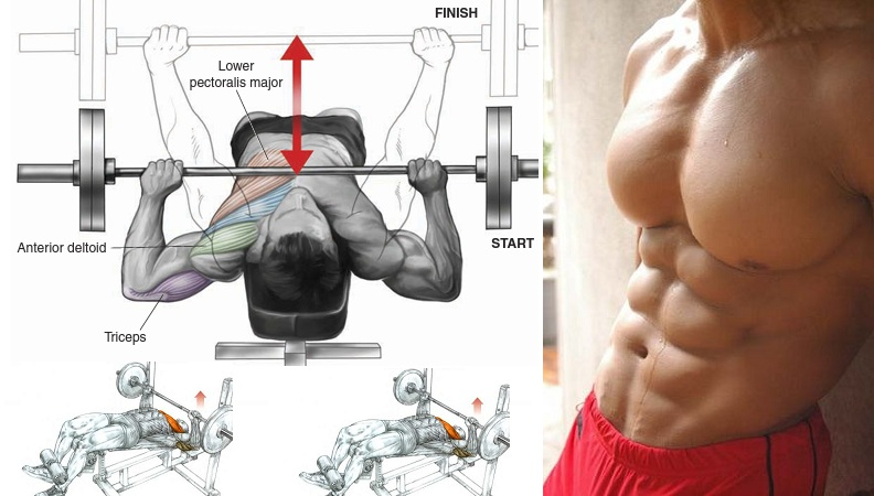 Get a Bigger Chest With Decline Bench Press