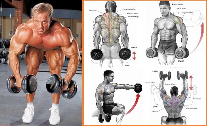 3 Great Shoulder Exercises