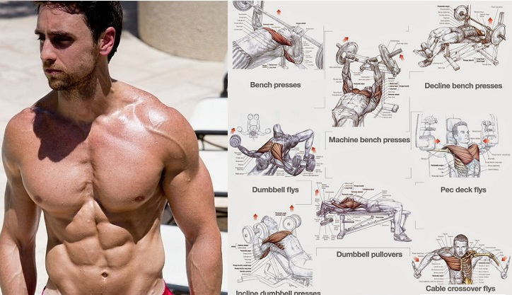 Top 4 Workouts For Chest For Building Muscle