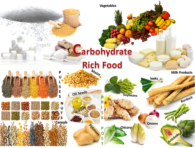 Should a Muscle Building Diet Include Carbs