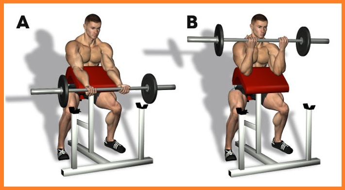 Use Super Set to Amp Up Your Bicep Work Out