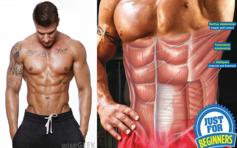 Avoid These 5 Beginner Mistakes To Get Abs Fast