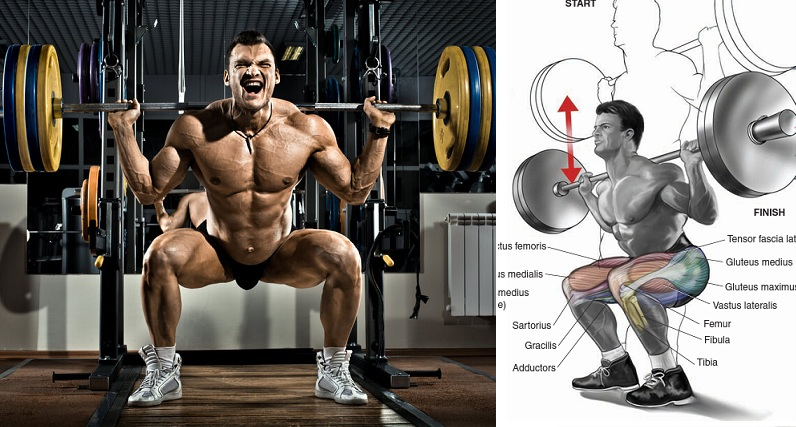 Benefits of Heavy Squats on Massive Muscle Gain
