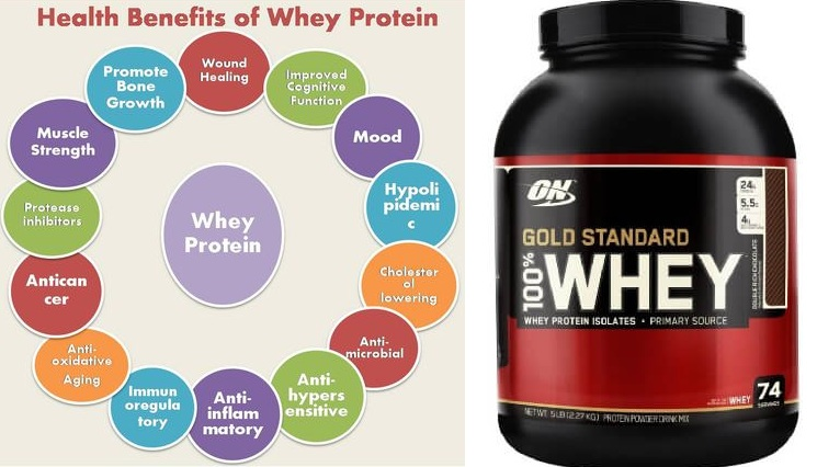 Health Benefits of Whey Protein