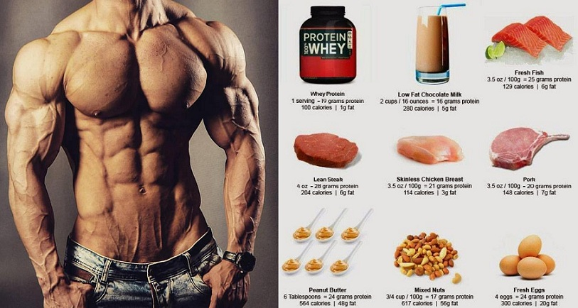 High Protein Muscle Building Foods You Must Start Eating