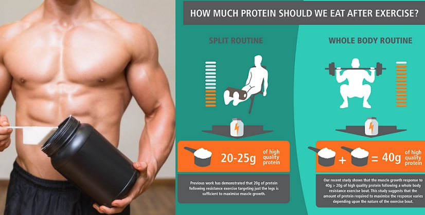 How Much Protein Is Enough For Growth
