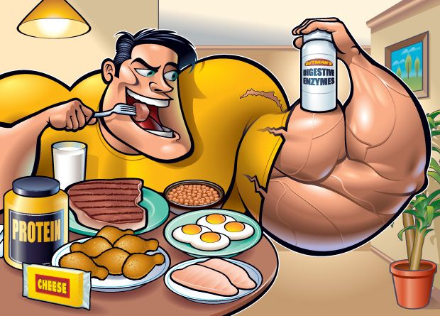 How Much Protein Per Day Should I Eat To Build Muscle?