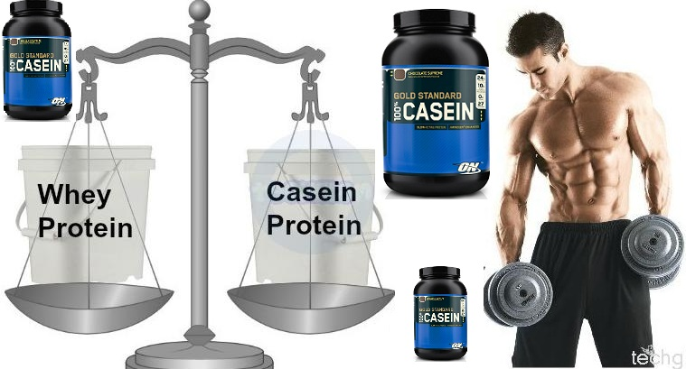 Muscle Building Protein - Casein Supplements