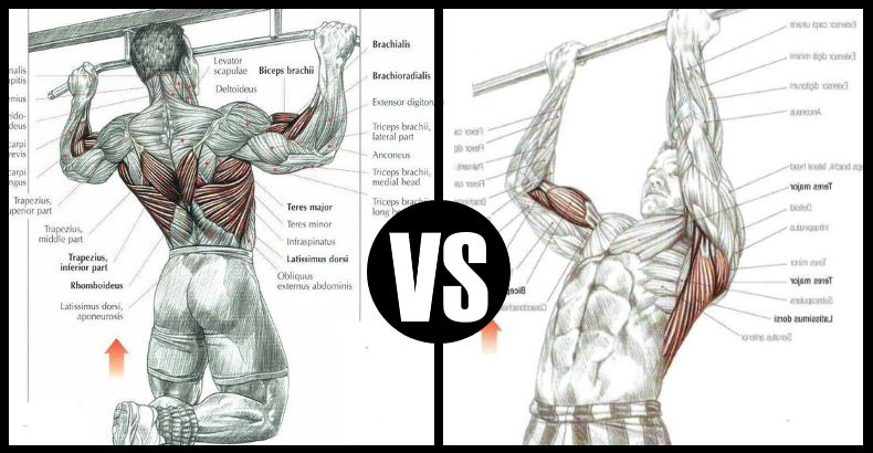 Chin Ups Vs Pull Ups - Which Exercise Gives You A Stronger Back?