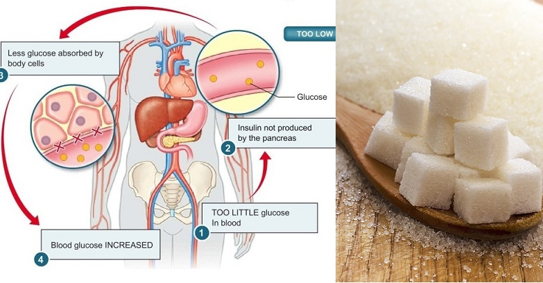 Do You Really Know What Sugar Does to Your Body?