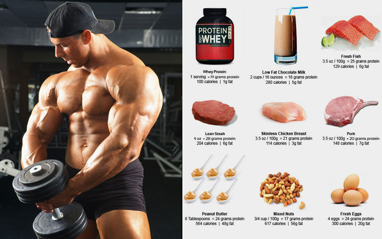 Muscle Building Meal Plans on a Budget - The Basics