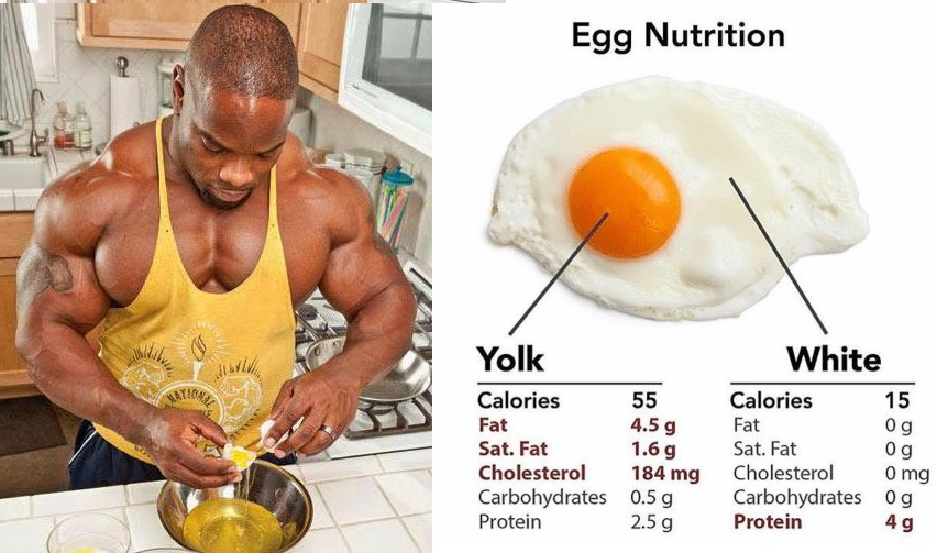 5 High Protein Breakfast For Muscle Gains !