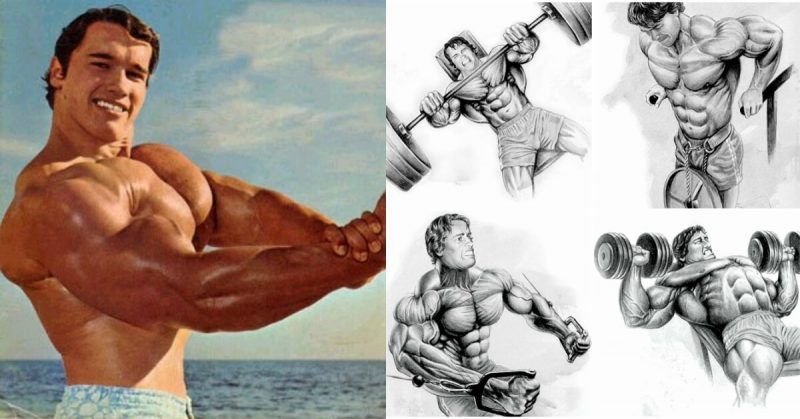 Arnold's Classic 4 Exercise Chest Workout