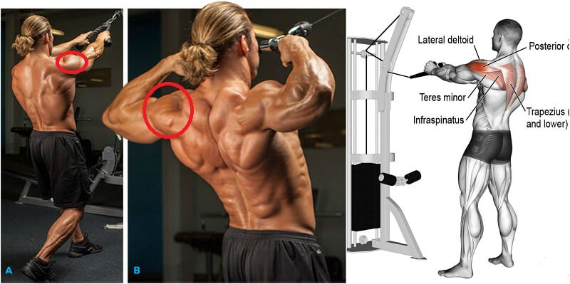 The 4 Best Exercises To Create 3D Shoulders