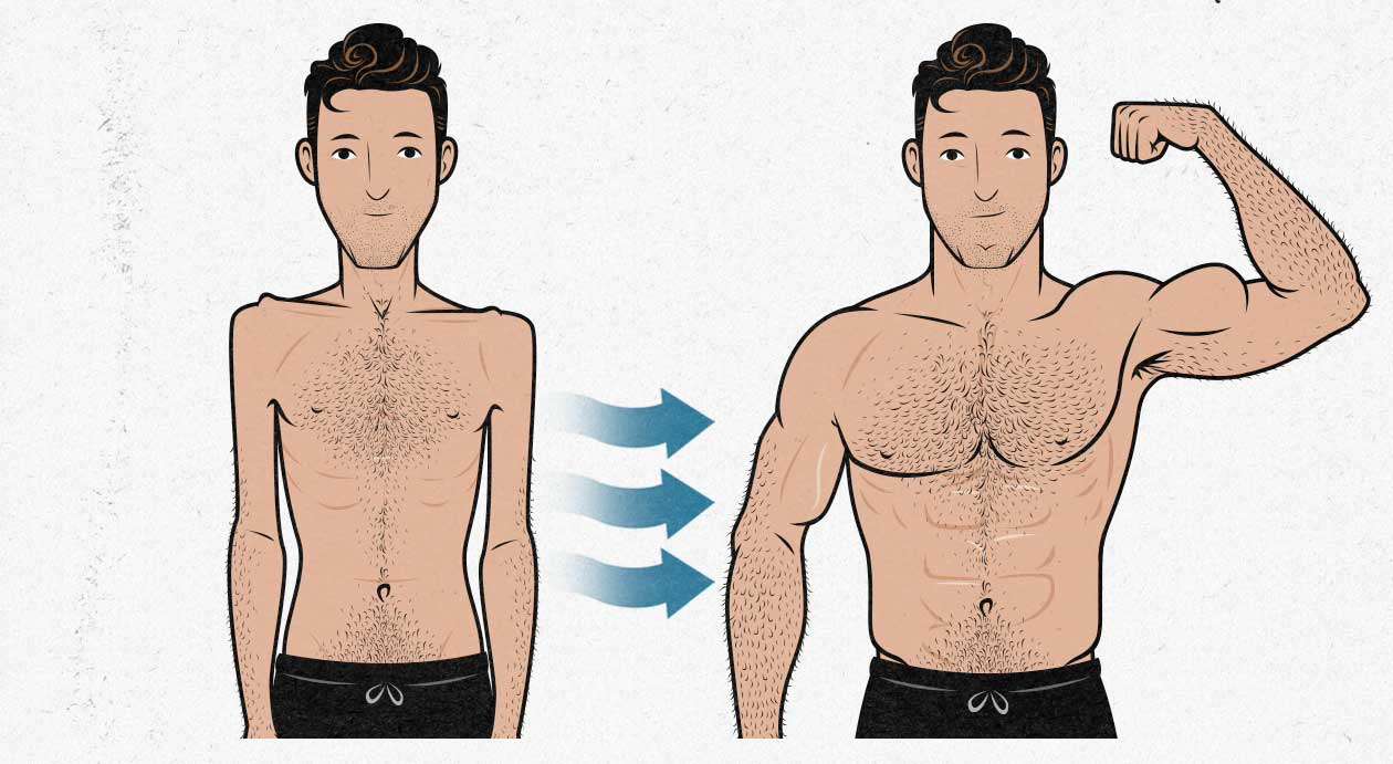 How To Gain 10 Pounds Of Muscle In 4 Weeks ?